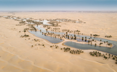 Wall Murals Desert aerial view of Al Qudra desert and lakes