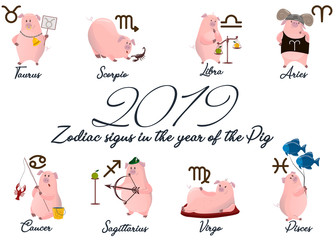 2019 Set of cute cartoon zodiac Pig. Vector illustration zodiacal symbols: Aries, Taurus, Gemini, Cancer, Leo, Virgo, Libra, Scorpio, Sagittarius, Capricorn, Aquarius, Pisces. pig collection.
