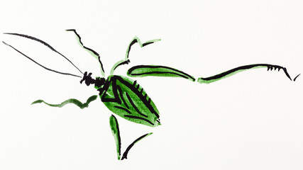 grasshopper drawn by green and black watercolors