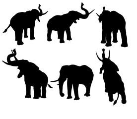 éléphant, silhouette, ombre chinoise, logo,  illustration, mammifère, sauvage, animal, isolé, noir, blanc, faune,