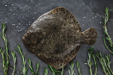 Raw whole flounder fish with rosemary on dark stone background. Creative layout made of fish, top view.