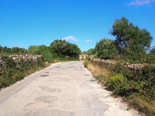 a typical narrow country road in menorca surrounded by old dry stone walls with surrounding fields and trees with a bright blue sunlit summer sky