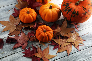 Diverse assortment of pumpkins on a wooden background. Autumn harvest.