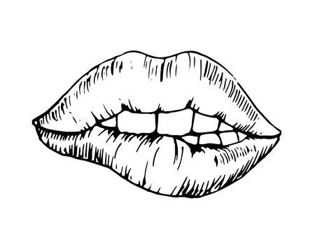 Sketch monochromatic vector drawing, bitten lip