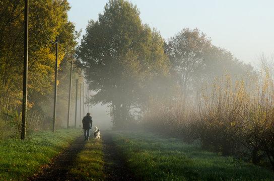 Morgenspaziergang mit Hund im Frühnebel