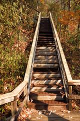 Wooden Staircase at Tallulah Gorge State Park Georgia USA