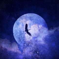 Illustrazione surreale e sognante con uccello in volo nel cielo notturno con luna, nuvole e stelle