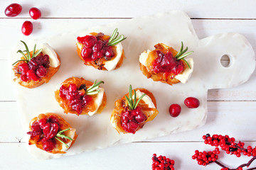 Holiday crostini appetizers with cranberries, brie and caramelized onions. Above table scene on a white platter.