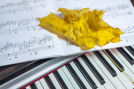 01.11.2018, Moscow, Russia. dry yellow maple leaf lying on the opened sheet music of Schumann R. on background of piano keyboard.