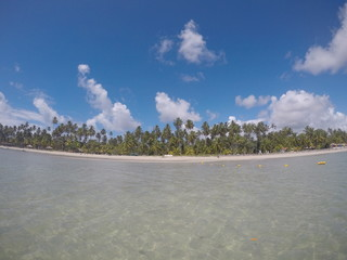 Carneiros Beach - Tamandare -Pernambuco - Brazil. Beach of warm waters with many palm trees and blue sky with clouds