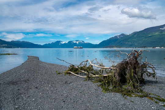 Sandbar reaches out into the Port of Valdez Alaska. Calm water, sunny day, mossy log in foreground