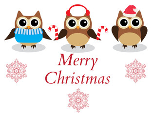 Vector Christmas Owls.
