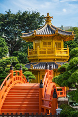 Gold pagoda amongst Buddhist pines with a red bridge. Peace and calm
