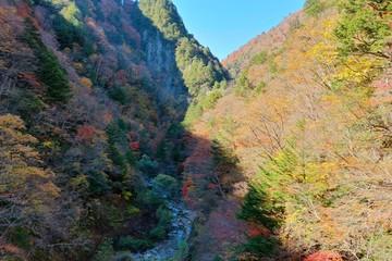 日本アルプス山麓にある北葛沢という渓谷を空撮