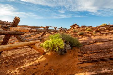 Fototapete - The Utah Desert at Golden Hour