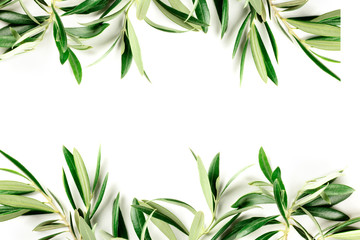 A photo of a frame of olive tree branches and leaves with copy space, shot from the top on a white background with a place for text, organic banner or invitation