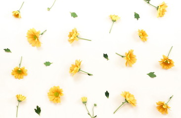 Flowers composition background. Yellow flowers pattern on light background. Flat lay. top view.