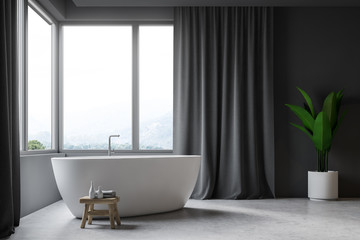Gray bathroom interior, tub