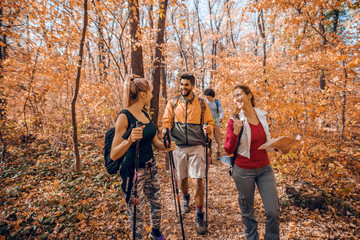 Group of hikers walking in forest in autumn.