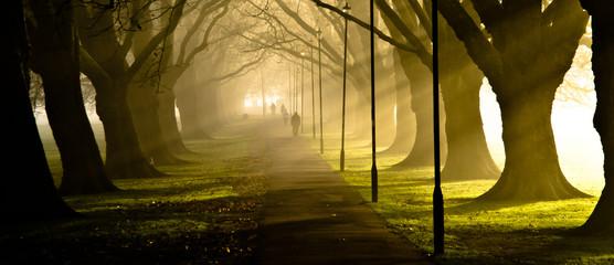 Jesus Green, Cambridge
