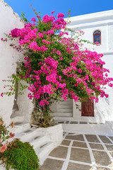 Greek whitewashed architecture with summer flowers. Serifos island. Cyclades, Greece.