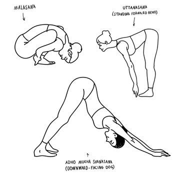 Malasana, uttanasana , adho mukha svanasana yoga poses