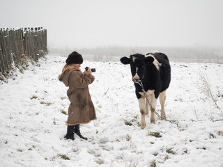A little girl takes pictures of a cow. Snow, winter