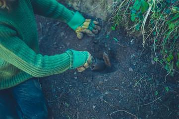 Gardener digging around a metal spike