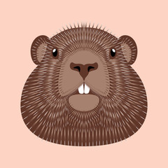 Groundhog Day. Concept National holiday in the USA and Canada. Vector illustration of the face of the animal groundhog.
