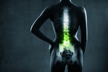 Human spine in x-ray, on gray background. The lumbar spine is highlighted by green colour.