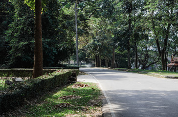 simple country road in summer at countryside with trees around