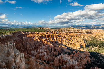 Wall Mural - The Bryce Canyon Amphitheater at Golden Hour