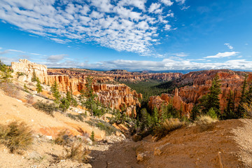 Wall Mural - Bryce Canyon's Peek-a-boo Loop Trail