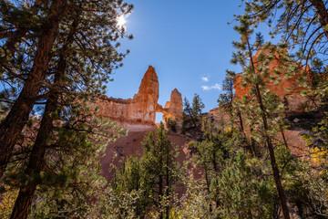Wall Mural - Bryce Canyon's Fairyland Loop Trail