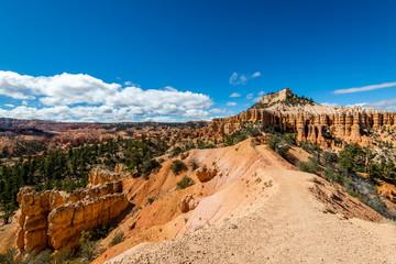 Fototapete - Bryce Canyon's Fairyland Loop Trail