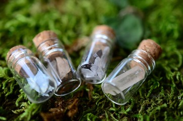 Adorable miniature bottles, fresh herbs and crystal bottles. Apothecary bottle set, cute little crystal vials, witchy decor. Wiccan ritual crystals with fresh flowers.