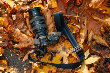 Mirrorless Camera and Lens in Autumn leaves