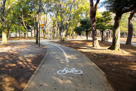 Landscape of Yoyogi park