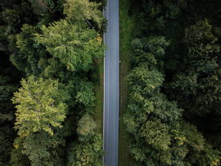 Asphalt road in forest from above