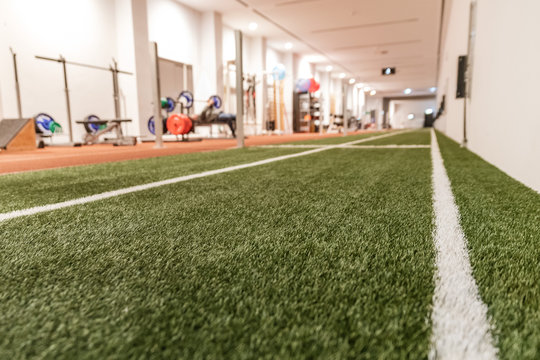 Artificial grass in the sport hall with the gym in background