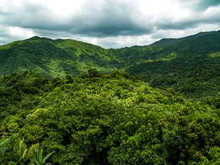 El Yunque Rainforest, Puerto Rico