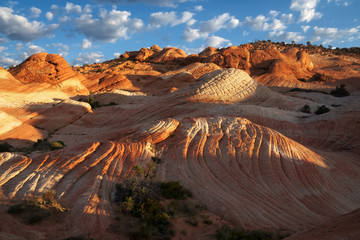 Yant Flat, Candy Cliffs, Utah, US. Undulating sandstone crossed by bands of different colors