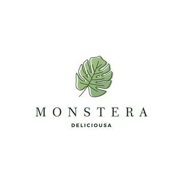 monstera deliciosa deliciousa leaf logo vector icon illustration