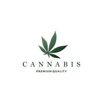 cannabis leaf logo vector icon