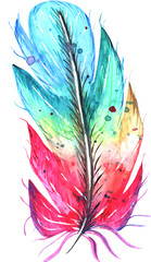 Watercolor colorful feathers on white background
