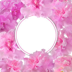 Festive floral frame template with pink gentle azalea flowers and blank round white space for text. Elegant flower design in romantic style