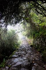 Travel destination Machu Picchu Inca ruins in Peru South America