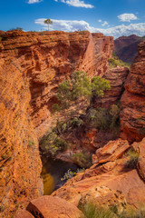 Garden of Eden, Kings Canyon, Northern Territory, Australia