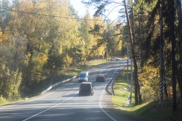 Autumn asphalt Road Alley