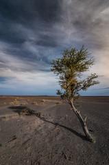 landscape of black desert near Merzouga, Morocco